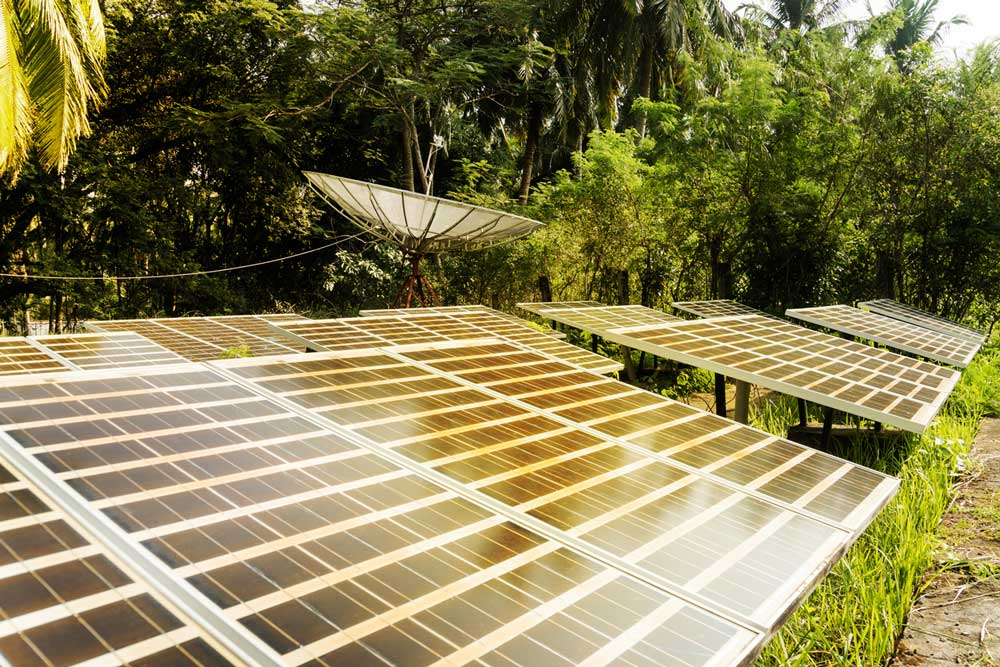 Solar panels in greenery. Photo.